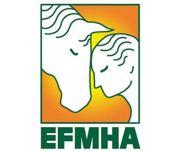 EFMHAv2